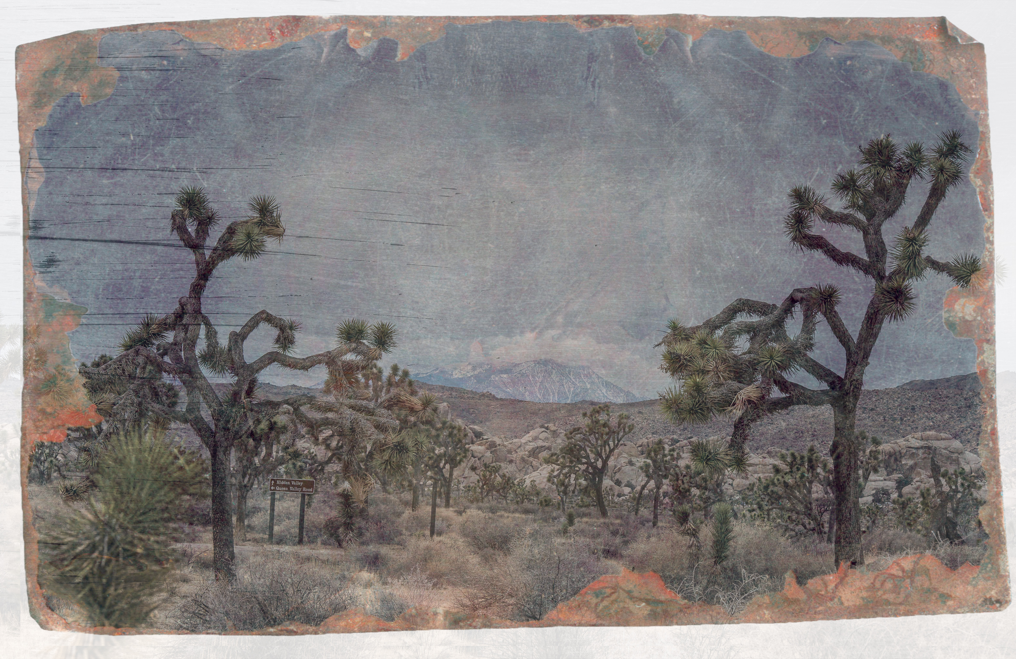 San Jacinto Years Gone By