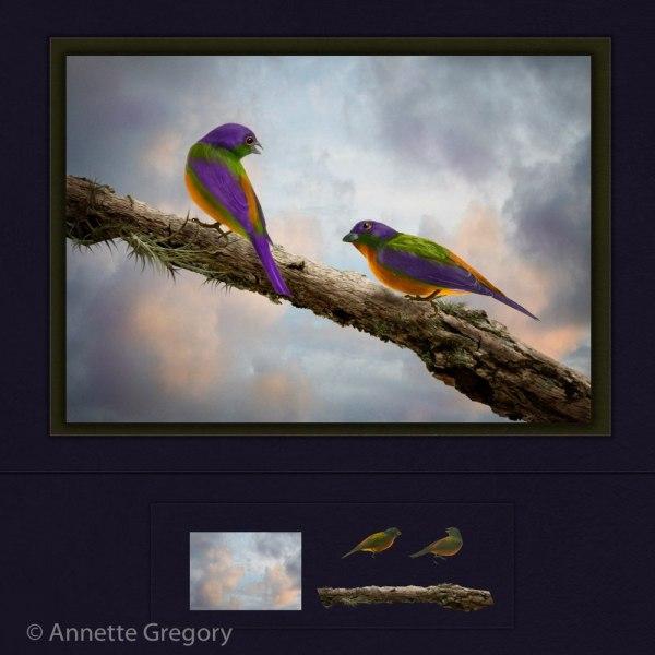 2180679_Workshop_Morning_Gossip_165367_Annette-Gregory